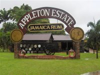 Appleton Estate Rum Excursion from Falmouth Cruise Pier.