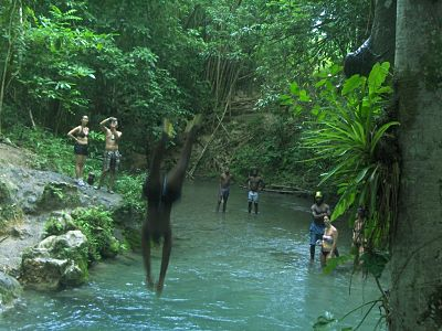 Mayfield Falls From Negril Jamaica 65 00